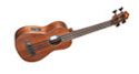 Fretless Ukulele Bass