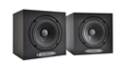 Passive Monitors (amplifier required)