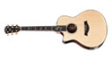 Lefthanded Western Guitars
