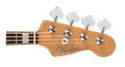 4 String Acoustic Bass