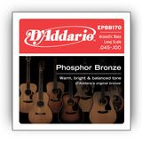 D'Addario Acoustic Bass Strings 45-100 45-65-80-100 Product Image