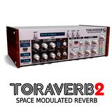 D16 Group Toraverb 2 Product Image