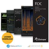 iZotope RX Post Prod Suite 2 License Code Product Image