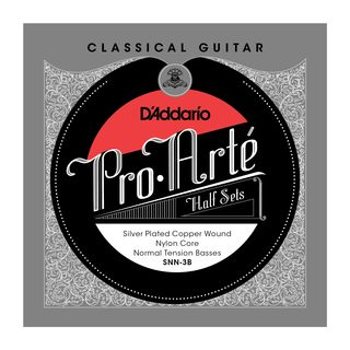 D'Addario Pro Arte Bass Set SNN-3B Silverplated, Normal Product Image