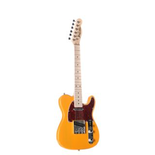 Jack & Danny Electric guitar TL-Mini BSB Butterscotch Blonde Product Image