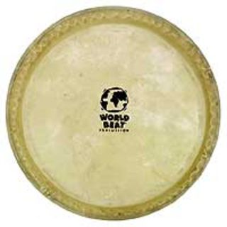 "Latin Percussion Bongo Head CP221B, 7"", for CP bongos Product Image"