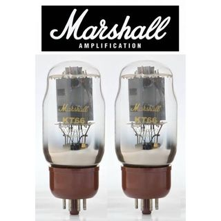 Marshall KT66 Duett Gold Label Productafbeelding