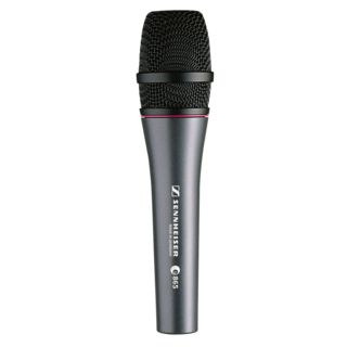 Sennheiser e 865 Supercardioid Vocal Condenser Microphone Product Image