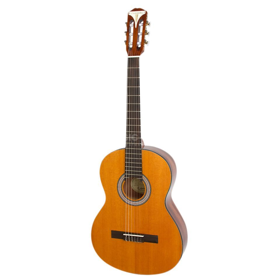 Epiphone PRO-1 Spanish Classic AN Product Image