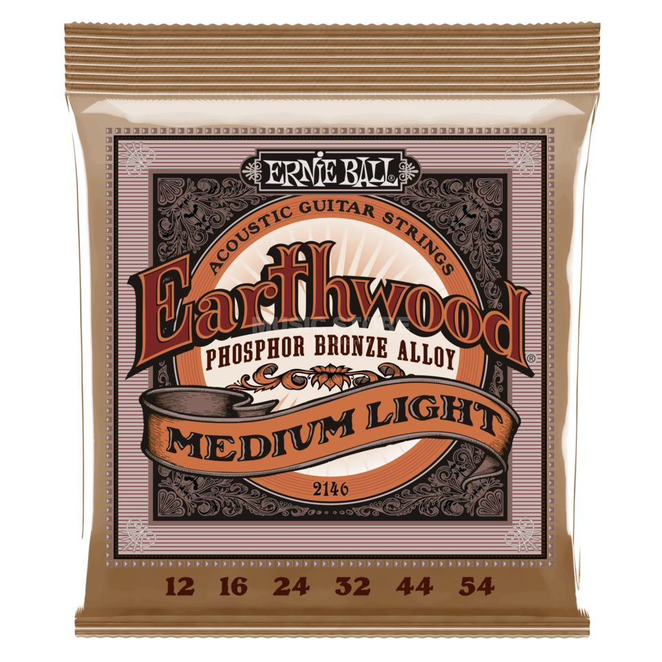 Ernie Ball EB2146 12-54 Earthwood Phosphor Bronze Regular Slinky Produktbild