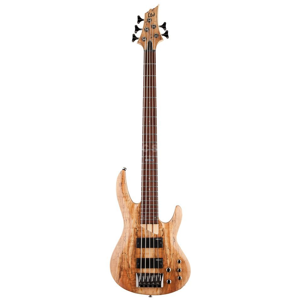 ESP LTD B-205SM Bass Guitar, Natur al Satin   Изображение товара