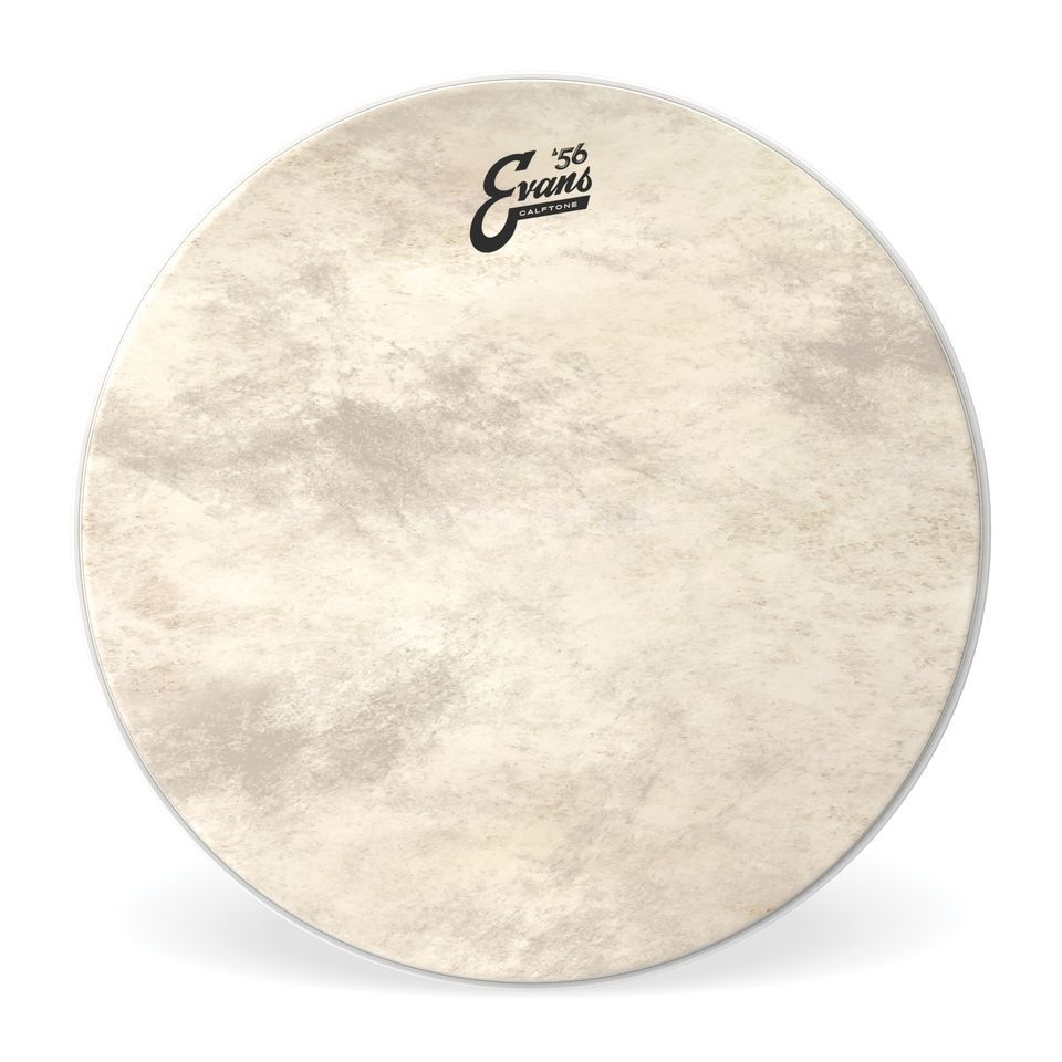 "Evans Calftone BD18CT, 18"", Bass Drum Batter Product Image"