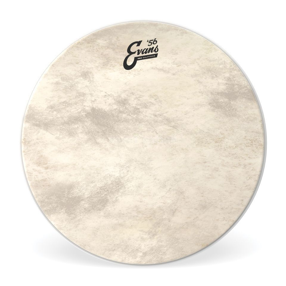 "Evans EQ4 Calftone BD24GB4CT, 24"", Bass Drum Batter Product Image"