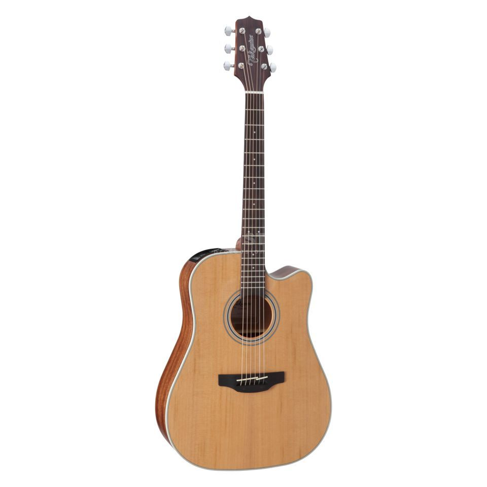 Takamine GD20CE NS2 Product Image
