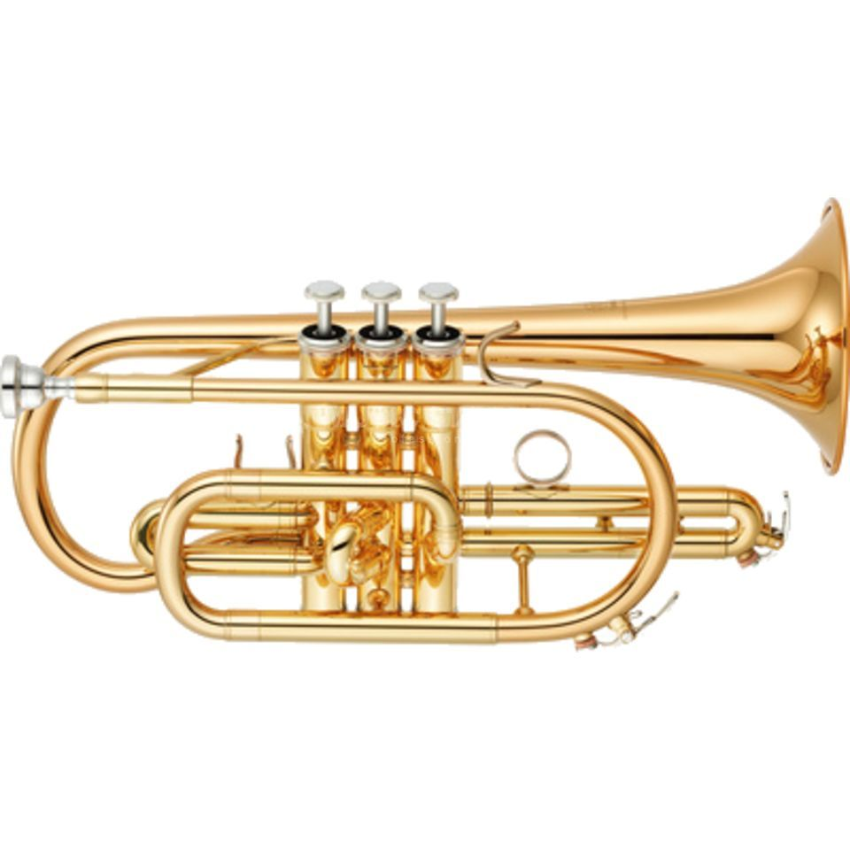 Yamaha YCR-4330G II Bb-Cornet Yellow Brass, Clear Lacquer Изображение товара