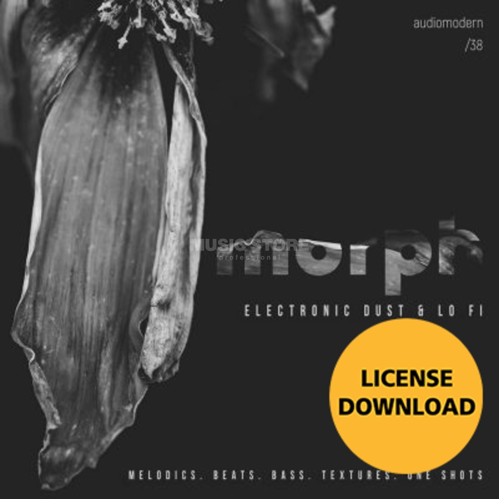 Audiomodern Morph License Code Product Image