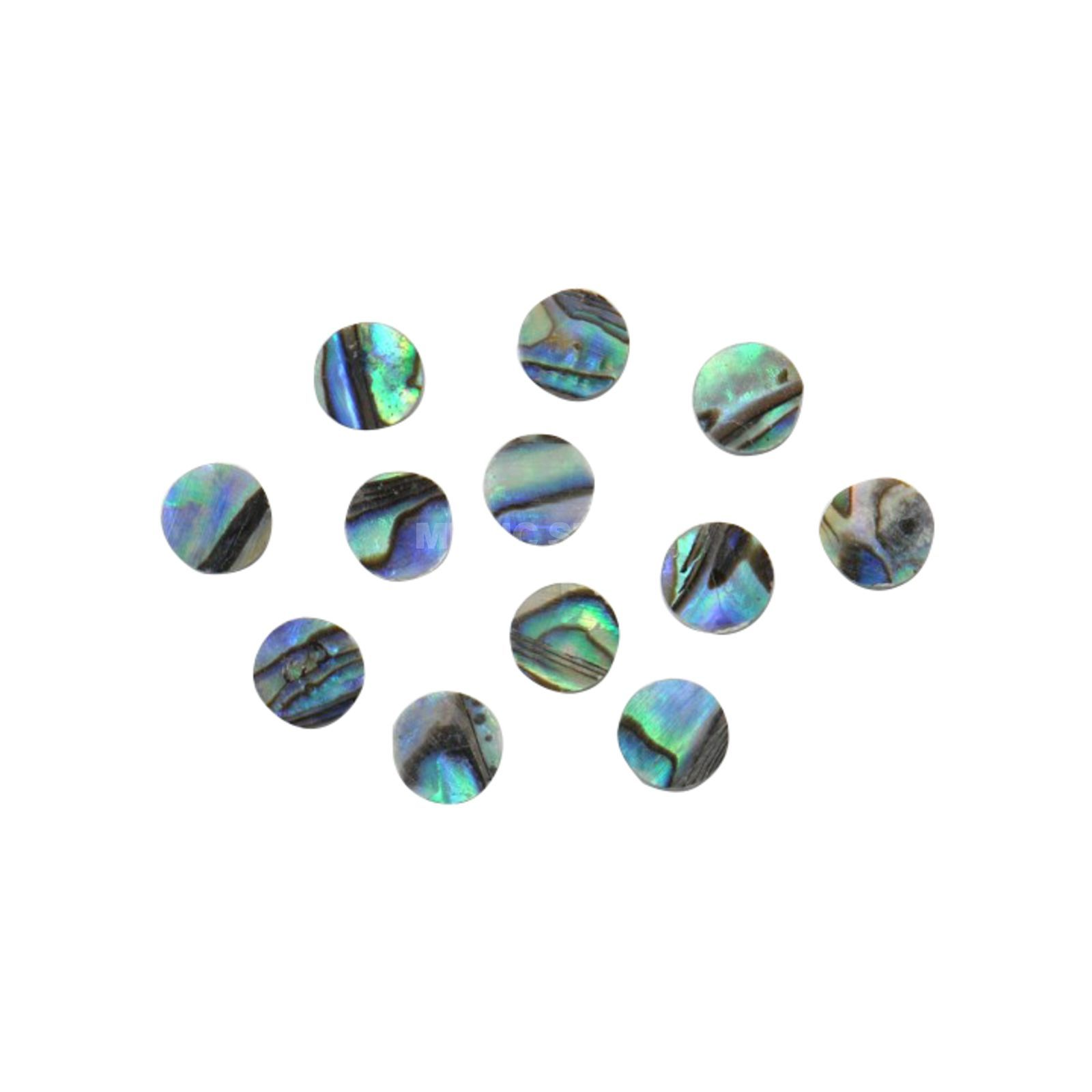 Göldo Dot 4,5mm Abalone 12er Pack Product Image