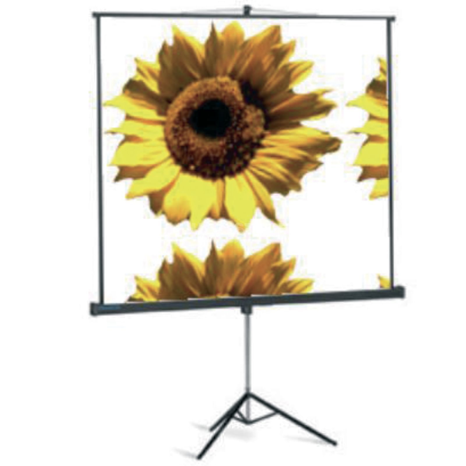 "lightmaXX Projection Screen on Tripod 200 x 150 cm 100"" / 4:3 Produktbillede"