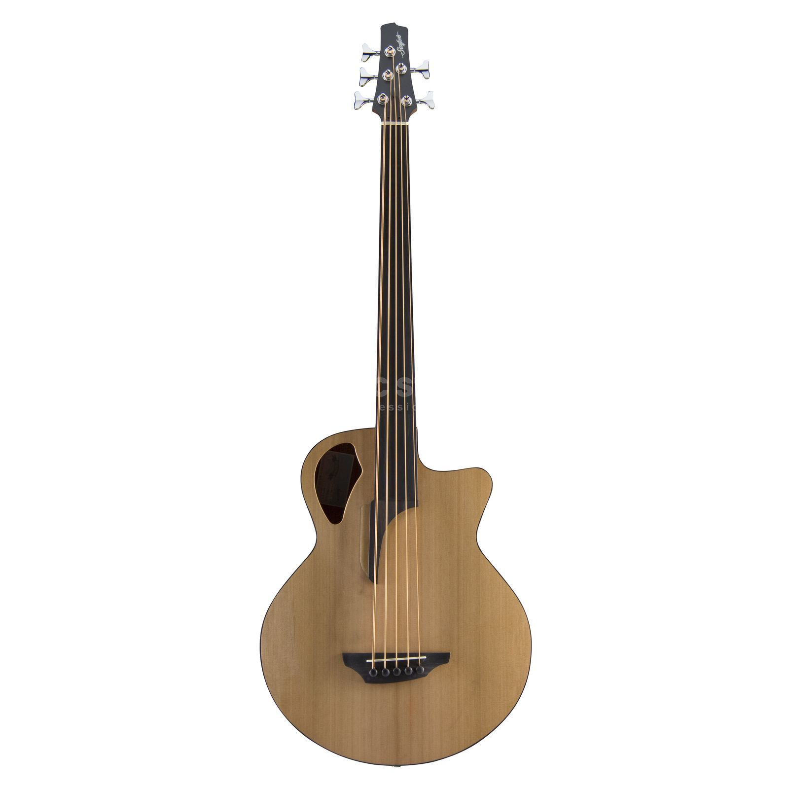 Stanford B 61 CM 5 Fretless  Product Image