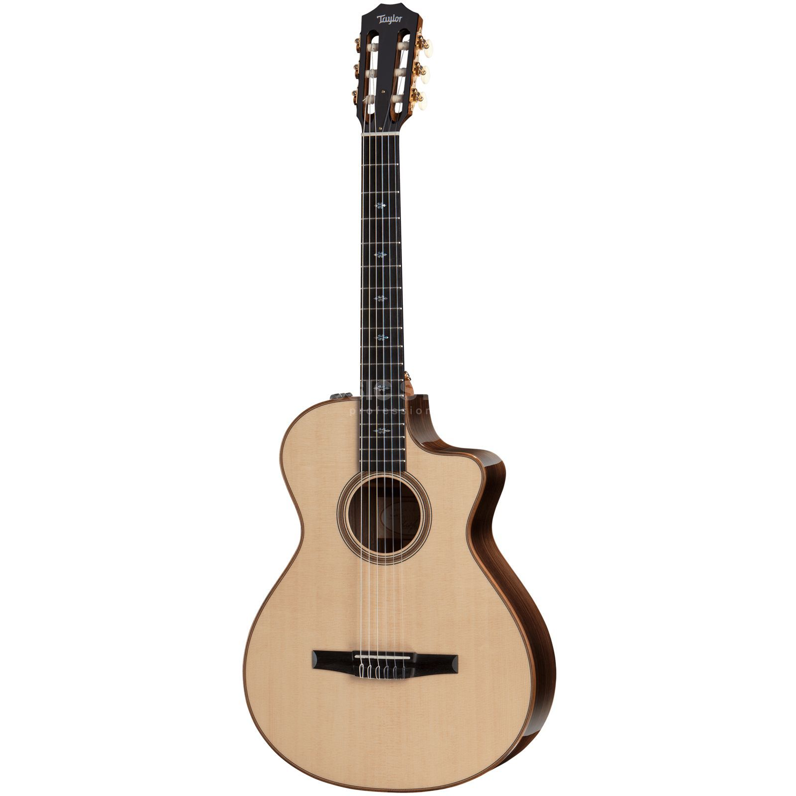 Taylor 712ce-N Nylon Product Image