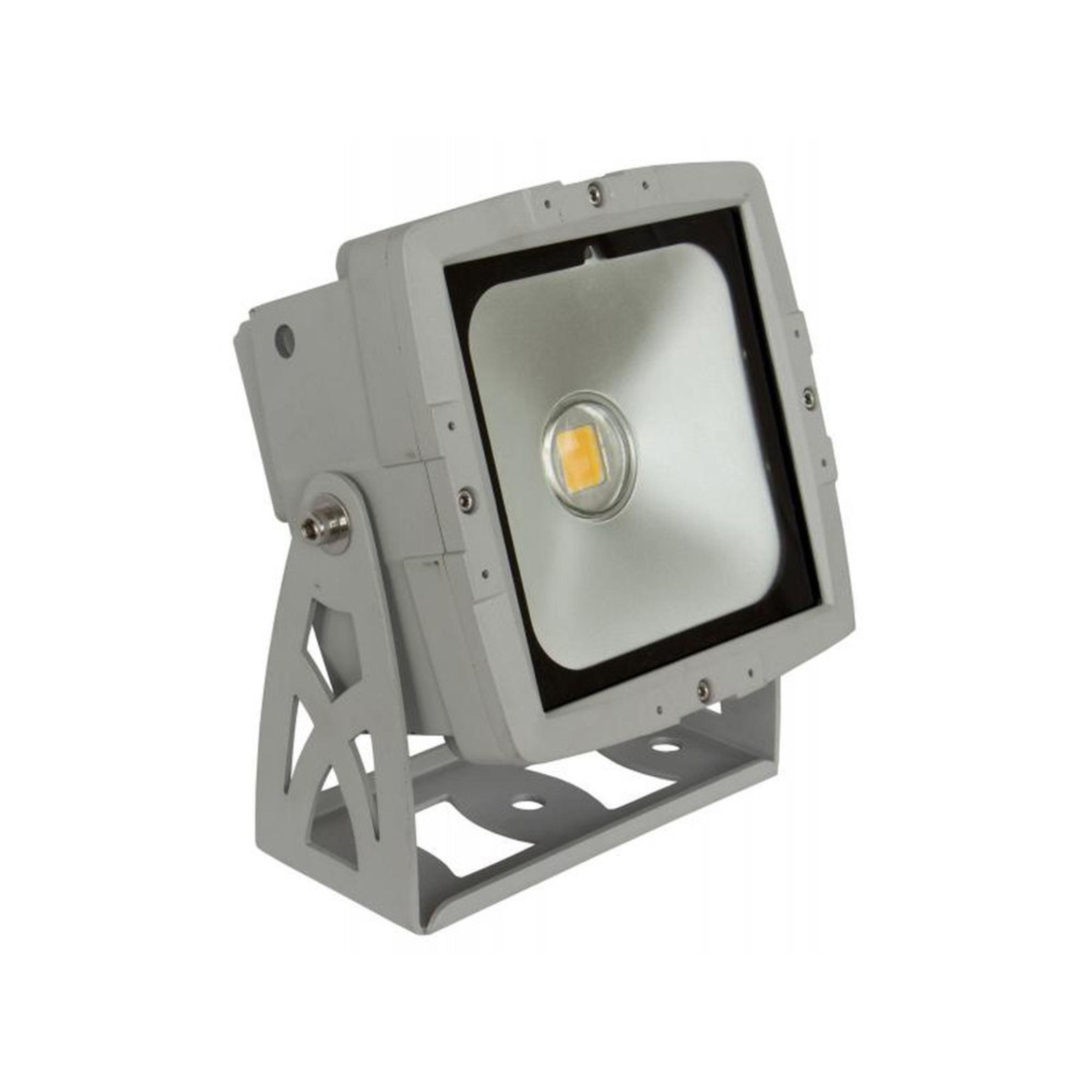 Briteq - LDP-COBWASH 50W warm white L27563