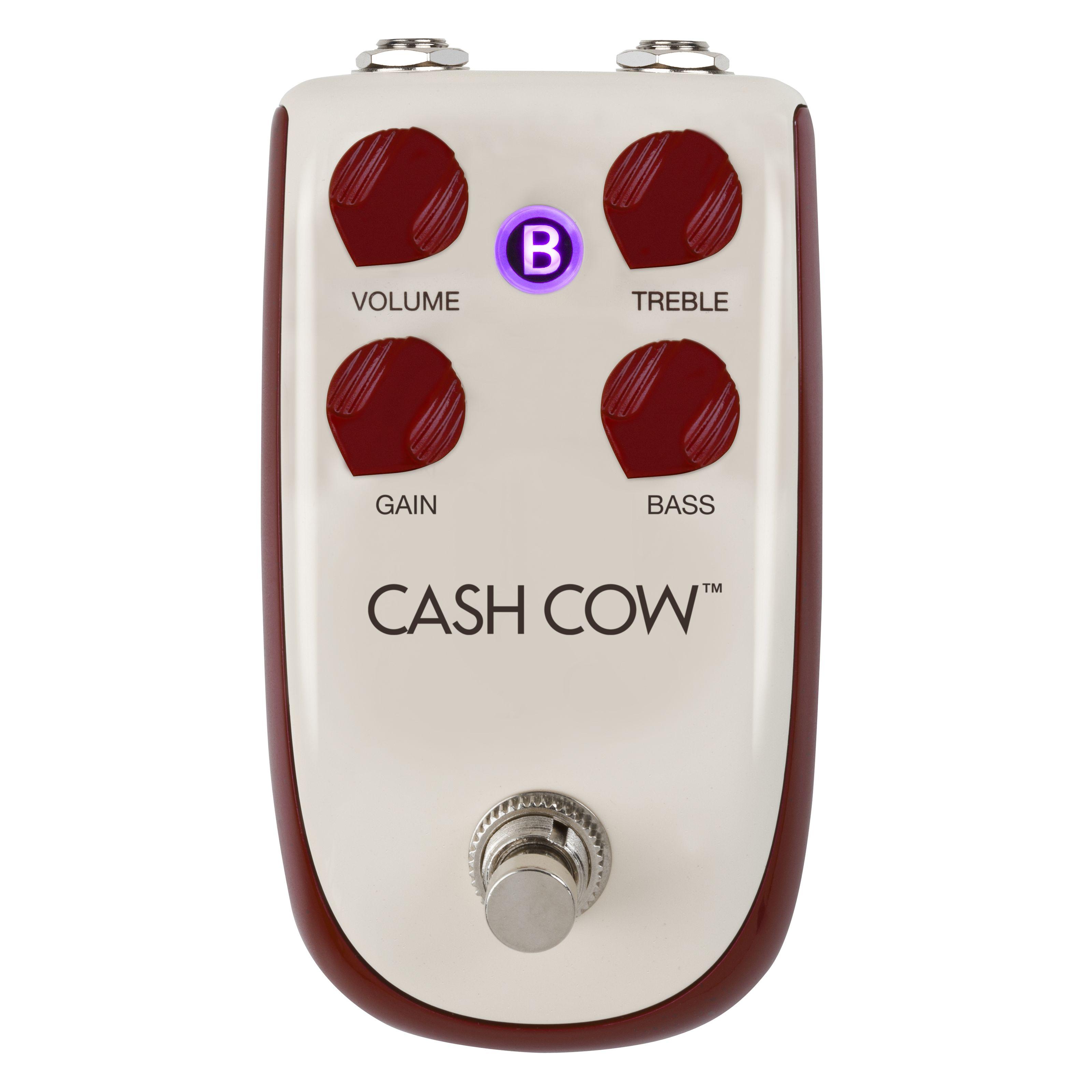 Danelectro - Billionaire Cash Cow