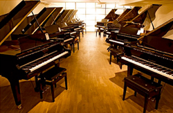 Partial View of all Pianos